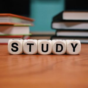 Pesquisas em Estratégias de Aprendizagem- Artigo